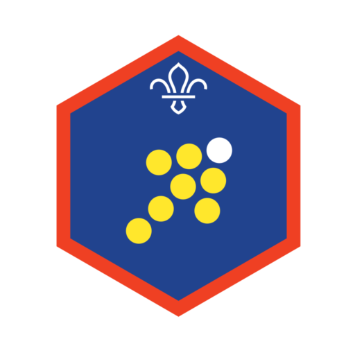 Scouts Team Leader Challenge Award Badge