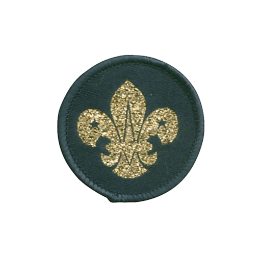 Air Scouts Beret Cloth Badge