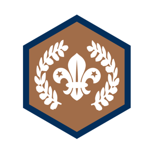 Beavers Chief Scout's Bronze Award Badge