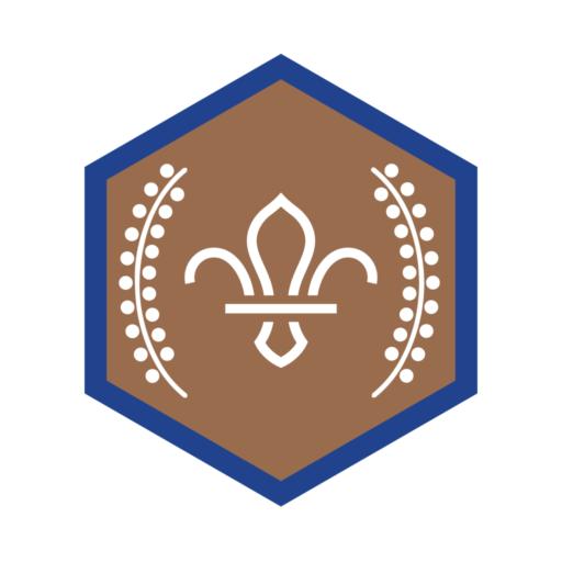 Beavers Chief Scout's Bronze Award Badge