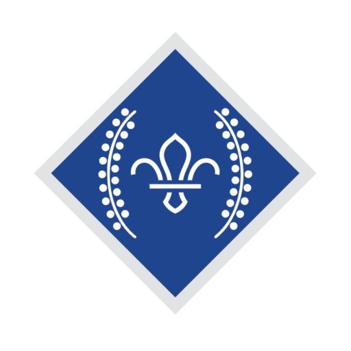 Network / Explorers Chief Scout's Diamond Award Badge