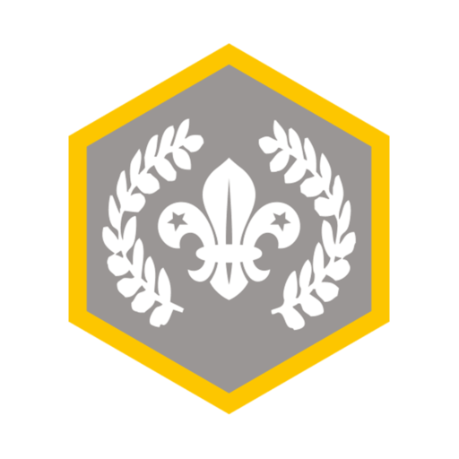 Cubs Chief Scout's Silver Award Badge