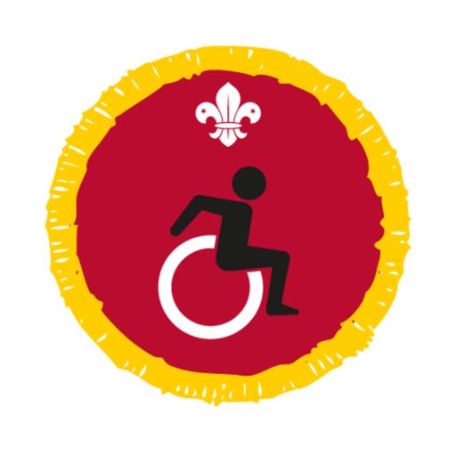 Cubs Disability Awareness Activity Badge