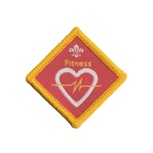 Cubs Fitness Challenge Award Badge (Pre 2015 Collection)