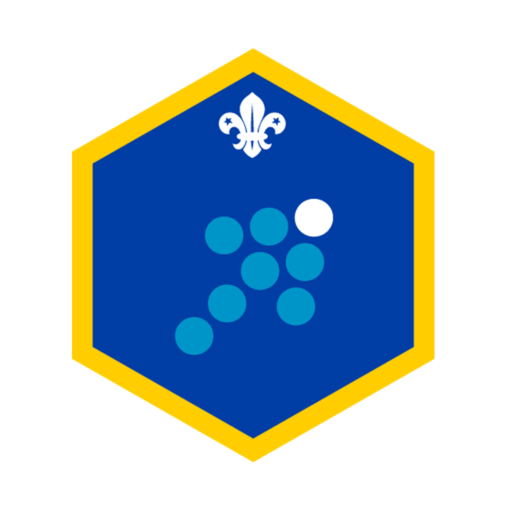 Cubs Team Leader Challenge Award Badge