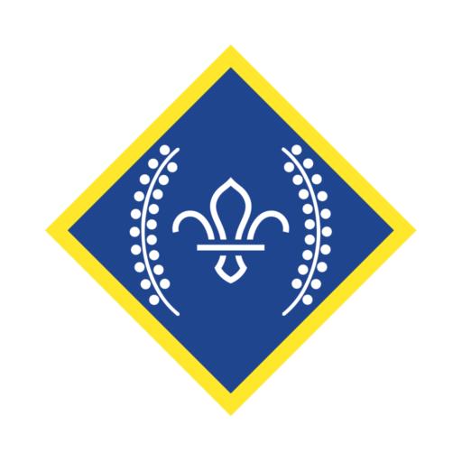 Network / Explorers Chief Scout's Platinum Award Badge