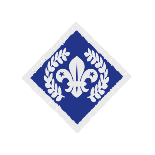 Network / Explorers Chief Scout's Diamond Award Badge