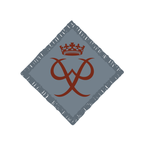 Network / Explorers Duke of Edinburgh's Bronze Award Badge