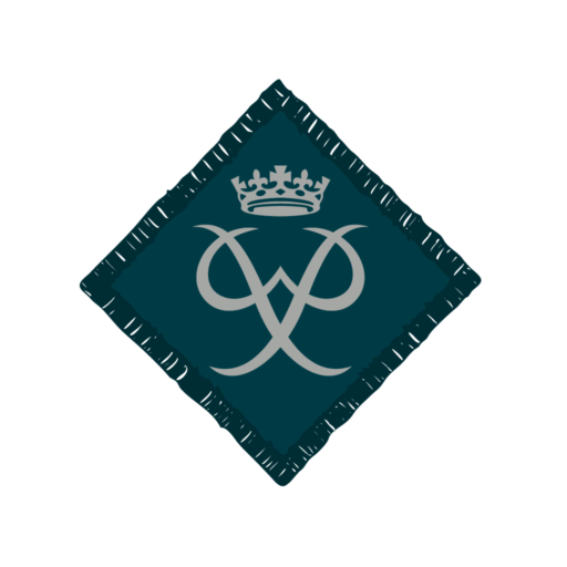 Network / Explorers Duke of Edinburgh's Silver Award Badge