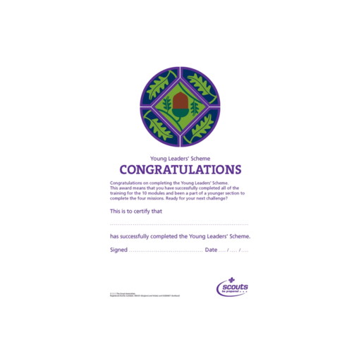 "Young Leaders ""Completing the Scheme"" Certificates  – 10 Pack"