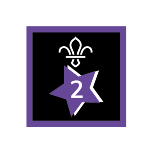 Joining In Award 2 Uniform Badge