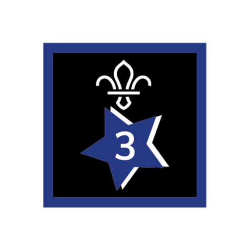 Joining In Award 3 Uniform Badge