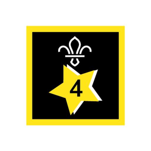 Joining In Award 4 Uniform Badge