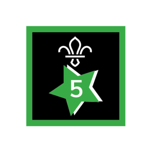 Joining In Award 5 Uniform Badge
