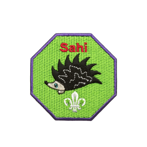 Cubs Sahi Fun Badge
