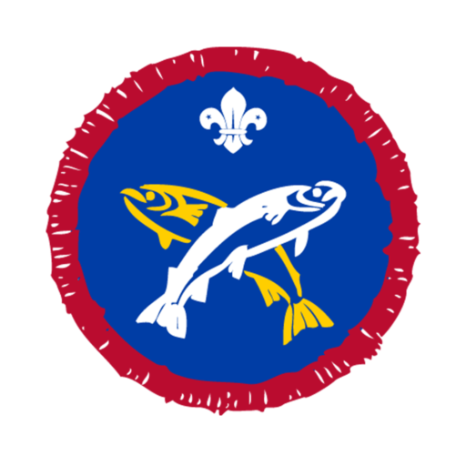 Scouts Angler Activity Badge