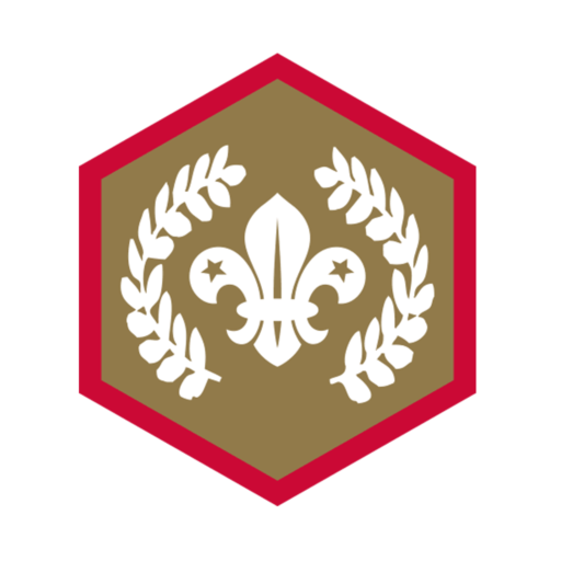 Scouts Chief Scout's Gold Award Badge