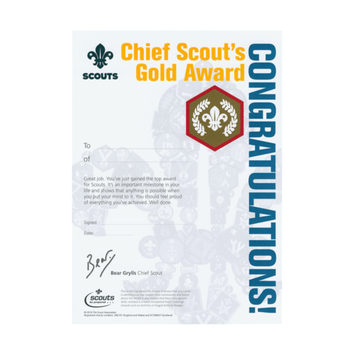 Scouts Chief Scout's Gold Award Certificates  – 10 Pack