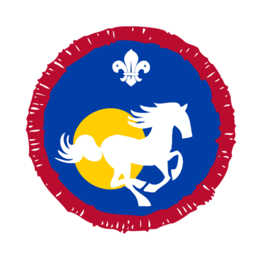 Scouts Equestrian Activity Badge