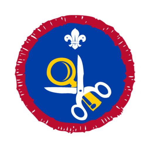 Scouts Hobbies Activity Badge