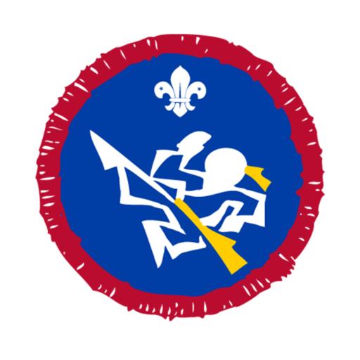 Scouts Martial Arts Activity Badge