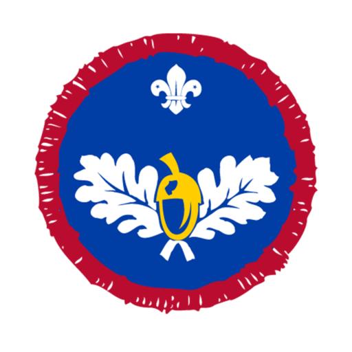 Scouts Naturalist Activity Badge
