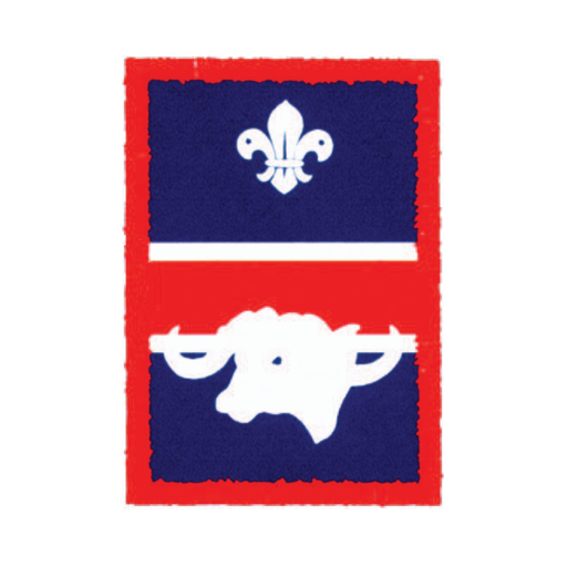 Scouts Buffalo Patrol Badge