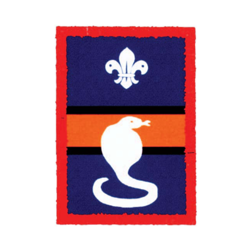 Scouts Cobra Patrol Badge