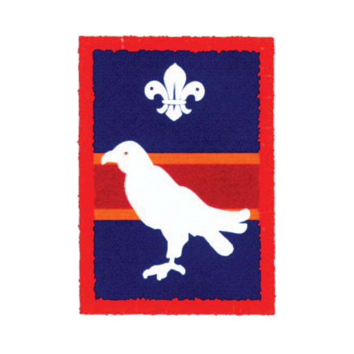 Scouts Falcon Patrol Badge