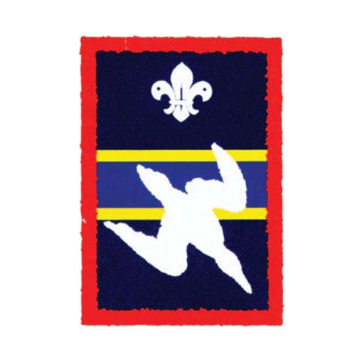 Scouts Gannet Patrol Badge