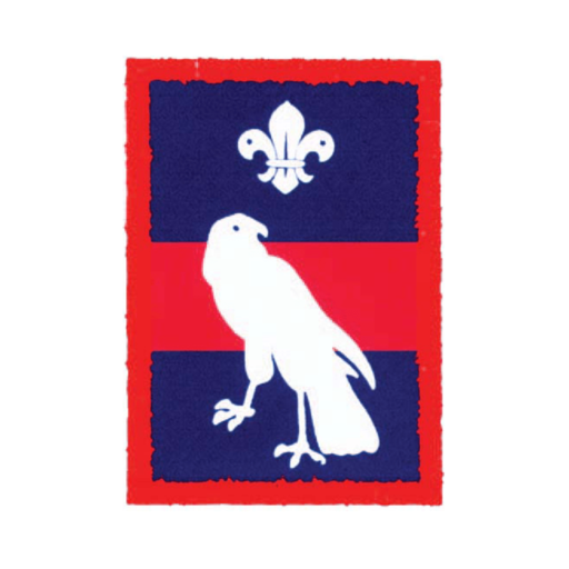 Scouts Hawk Patrol Badge