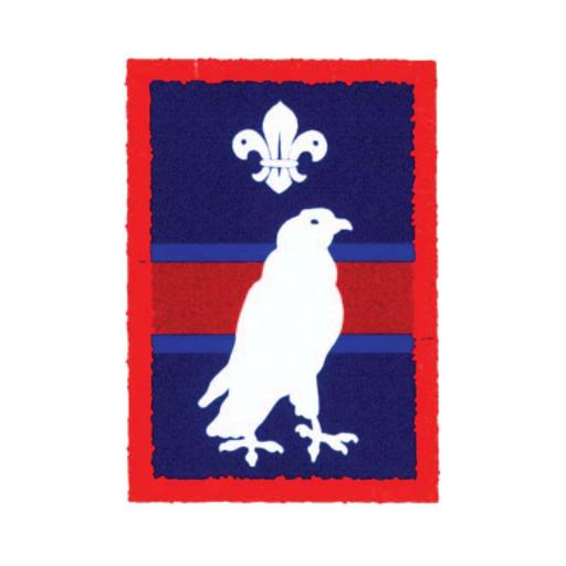 Scouts Merlin Patrol Badge