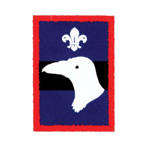 Scouts Raven Patrol Badge