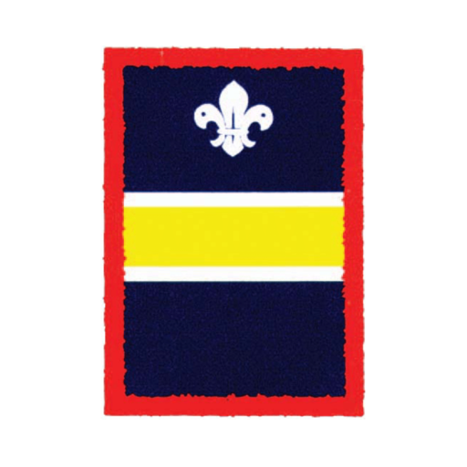 Scouts Yellow Patrol Badge