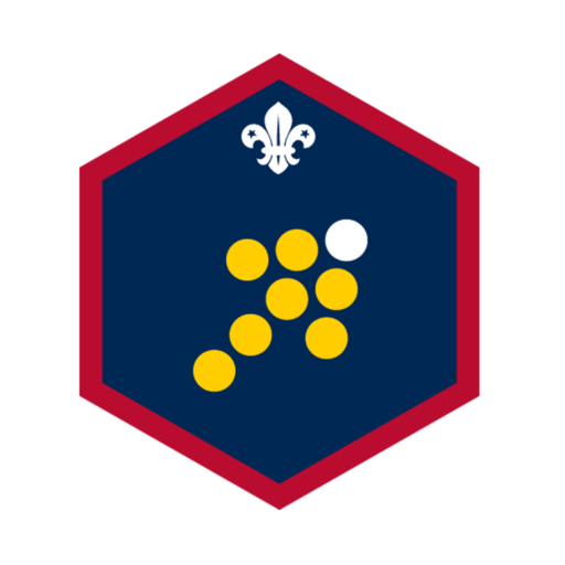 Scouts Team Leader Challenge Award Badge