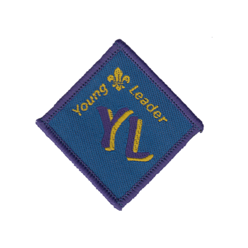 Young Leaders Module A Award Badge (Pre 2015 Collection)