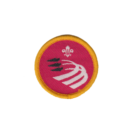 Cubs Air Activities Activity Badge (Pre 2015 Collection)