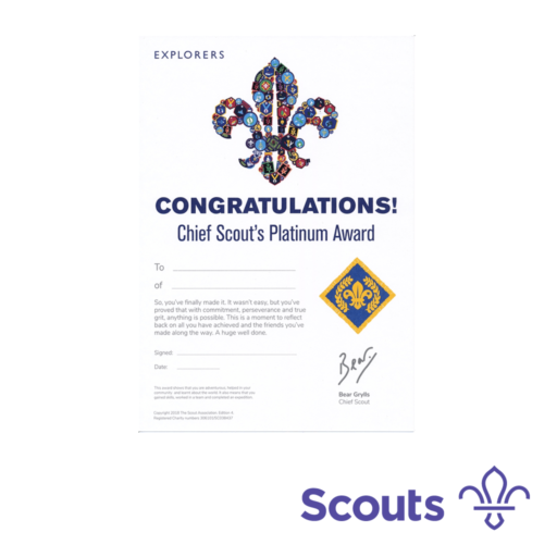 Network / Explorers Chief Scout's Platinum Award Certificates  – 10 Pack