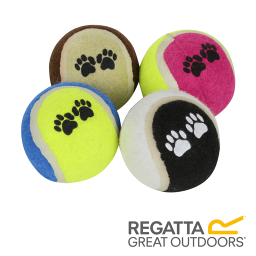 Regatta Fetch Ball Set