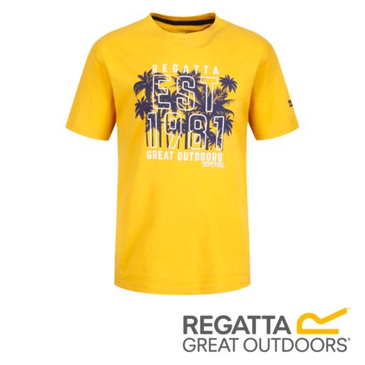 Regatta Kid's Bosley II Adventure Graphic Print T-Shirt – Old Gold