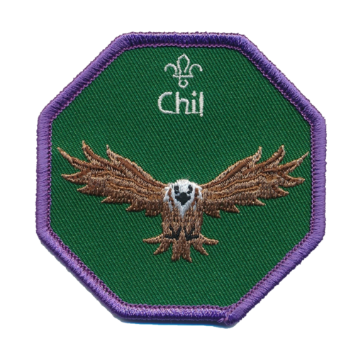 Cubs Chil Fun Badge