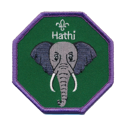 Cubs Hathi Fun Badge