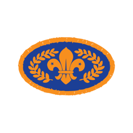 Beavers Chief Scout's Bronze Award Badge (Pre 2009 Collection)