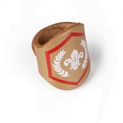 Scouts Chief Scout's Gold Award Woggle