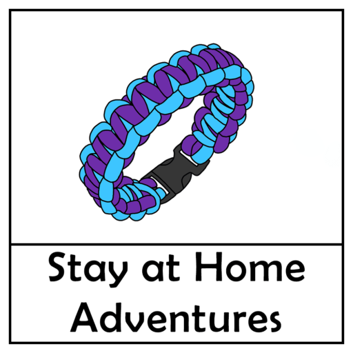 Project X Stay at Home Adventure – Bracelet Paracord Craft Kit