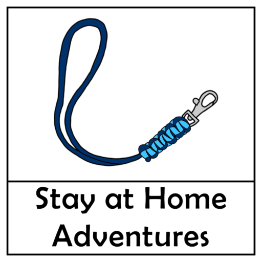 Project X Stay at Home Adventure – Lanyard Paracord Craft Kit