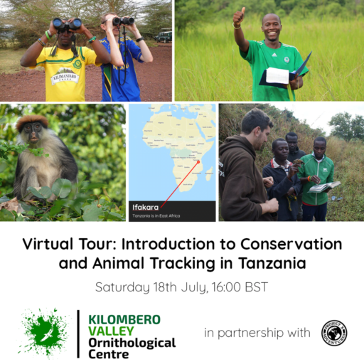 Project X Virtual Tour: Introduction to Conservation and Animal Tracking in Tanzania – Saturday 18th July, 16:00 BST