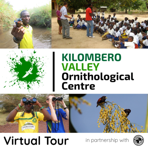 Project X Virtual Tour for Groups: Kilombero Valley Ornithological Centre